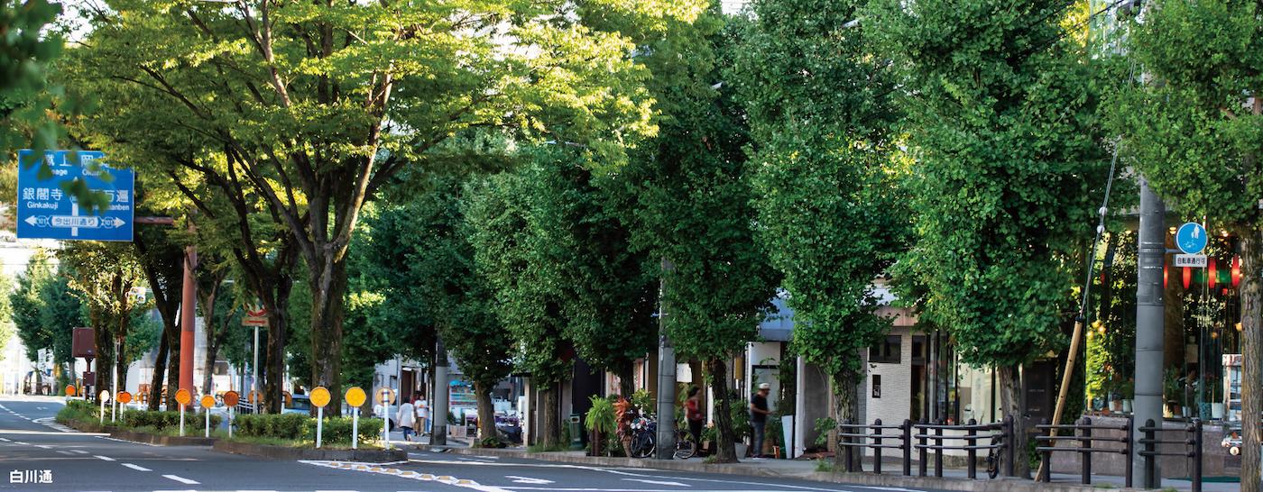 京都 北白川 銀閣寺道 収益用レジデンス 物件情報 ダイマルヤ